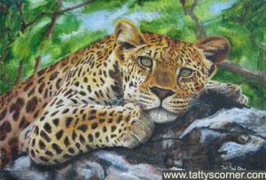 leopard_b