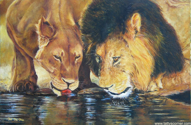 A Pair of Lions Drinking.