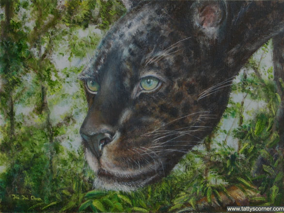 The Stalking Black Jaguar