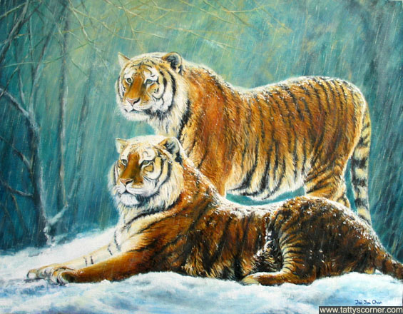 Siberian Tigers – a nice peaceful scene for our anniversary in February 2006.