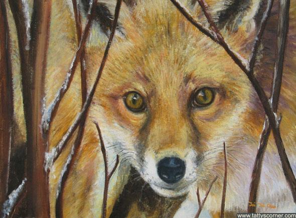 The Stalking Fox in winter when food is scarce.