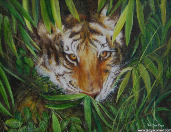 Tiger 2.  Are his eyes following you?